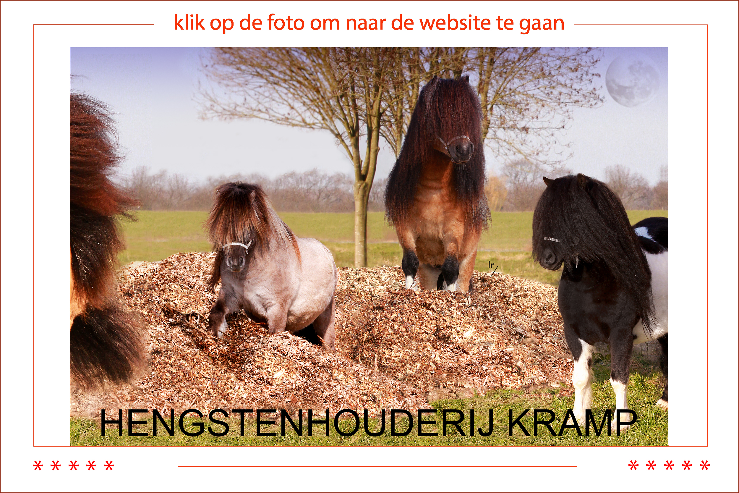 Advertentie: